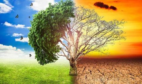 Un estudio pronostica el fin de la especie humana en 2050